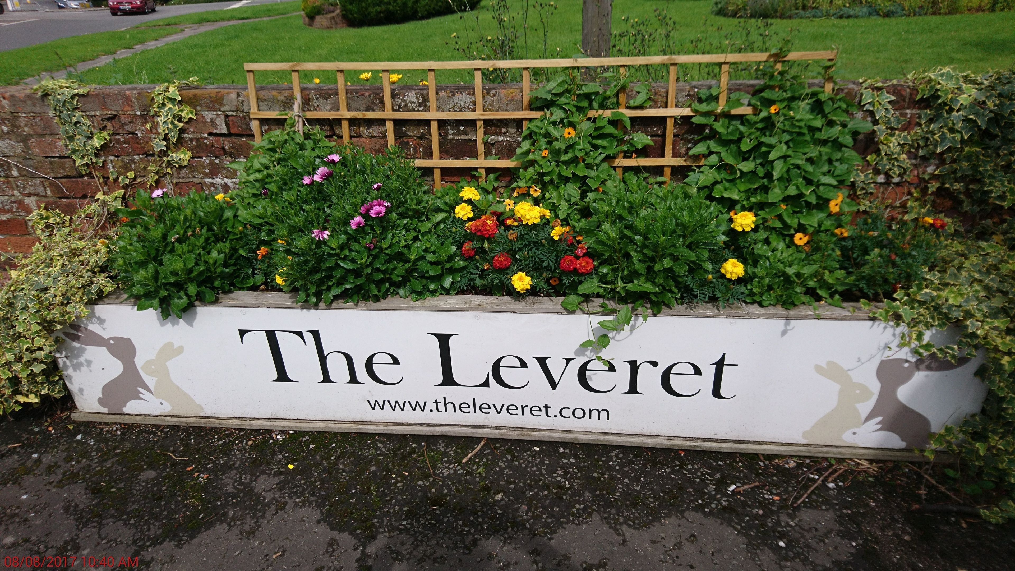 The Leveret Outside